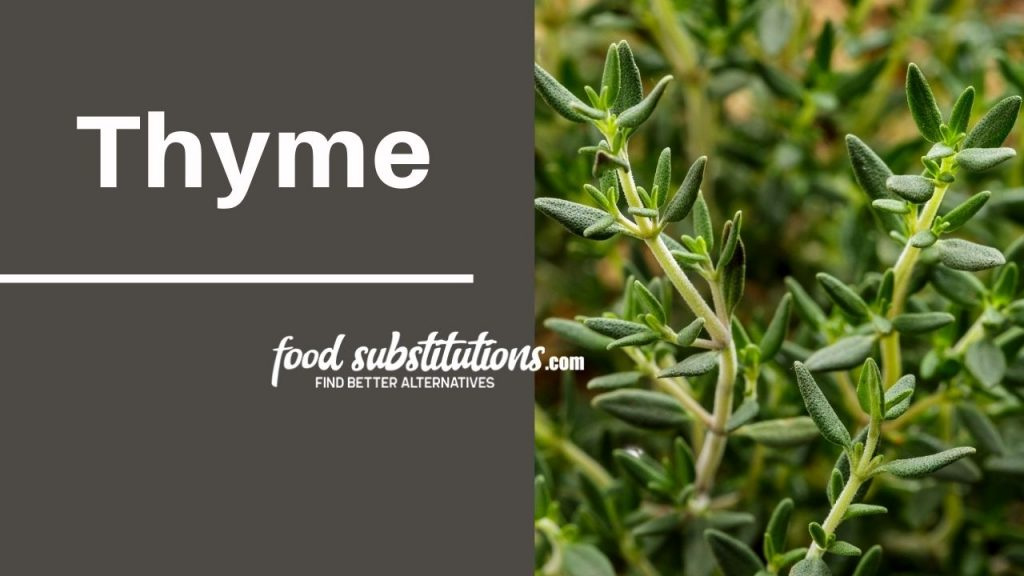 substitute for dill -  thyme