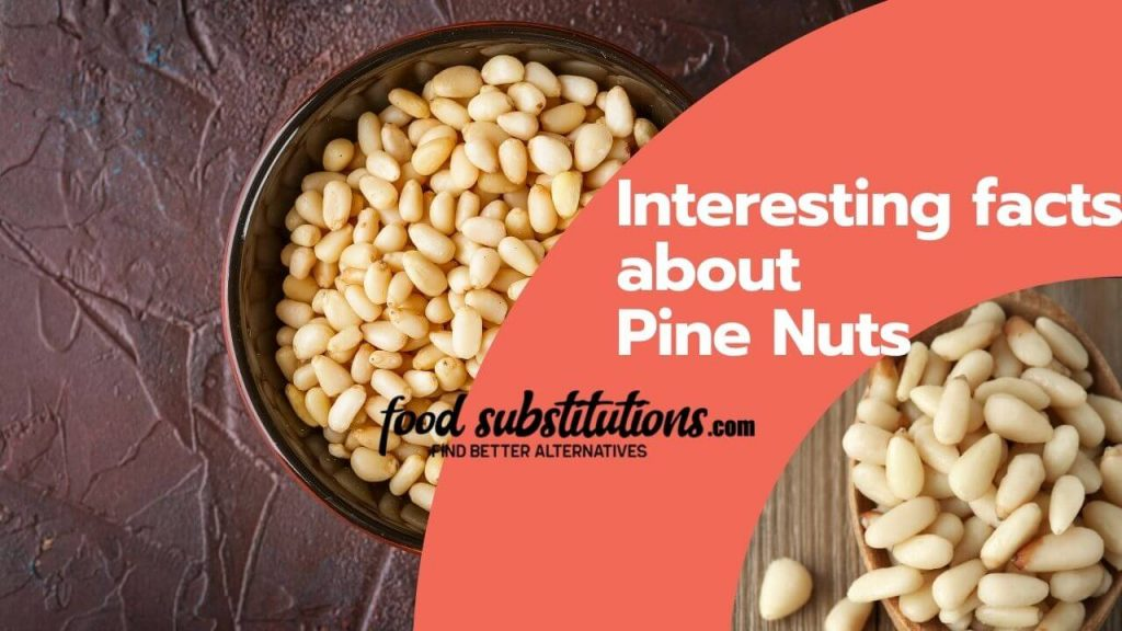 pine nut facts